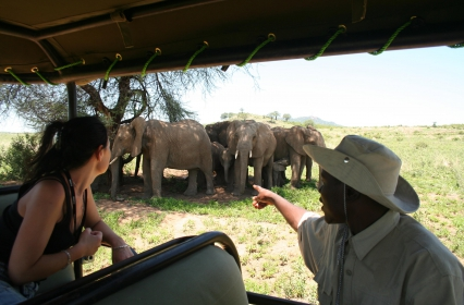 Activity – game drive 3