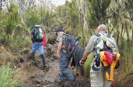 Kilimanjaro Kili Trek