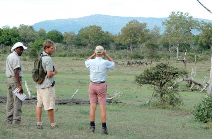 Walking safari 1